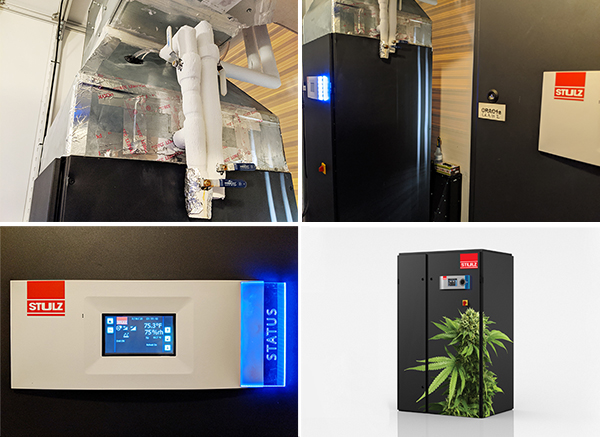 STULZ-CyberOne-Temperature-and-Humidity-Control-in-STEM-Cultivation-Group-Image