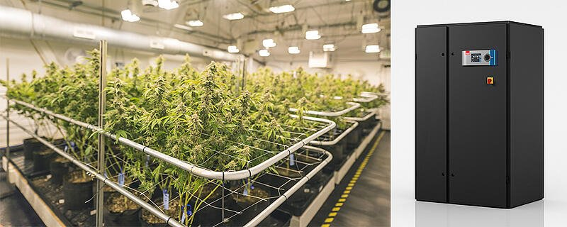 STULZ-CyberOne-Environmental-Control-Solution-for-Grow-Rooms